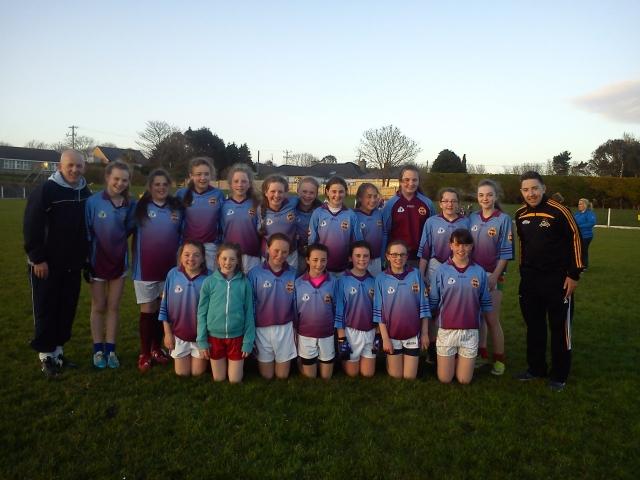 St Colmans U 14 team 2016