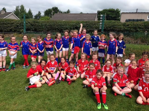 Erins Own and Inch Rovers U 8 Girls Stars of the Future