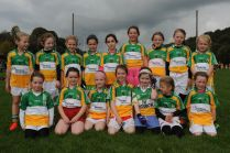 Bride Rovers U 8 Girls who played in the East Cork Ladies Football Blitz
