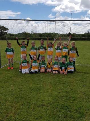 Bride Rovers U8 team v Na Piarsaigh (1)
