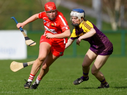 REPRO FREE***PRESS RELEASE NO REPRODUCTION FEE*** Littlewoods Ireland Camogie League Division 1, Cork IT, Cork 19/3/2017 Cork vs Wexford Cork's Jennifer Barry and Wexford's Una Sinnott Mandatory Credit ©INPHO/Ken Sutton